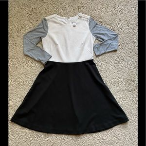 Ann Taylor LOFT Fit and Flare Dress